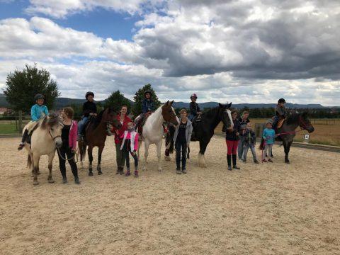 """Ein Nachmittag lang """"Pferde kennenlernen"""" im Rahmen vom LULE-Projekt der Neugreuthschule"""